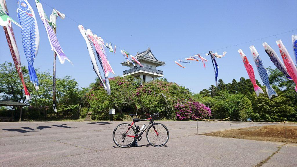 万喜城の桜と鯉のぼりとロードバイク