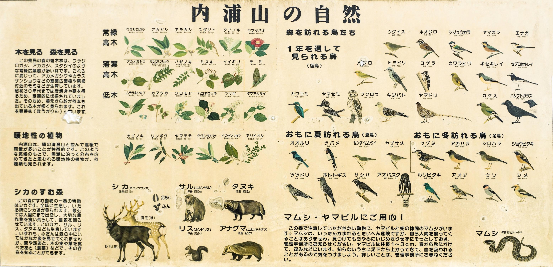 内浦山の生息動植物の看板