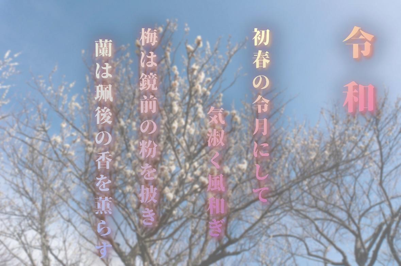 令和 万葉集の文章と梅の花