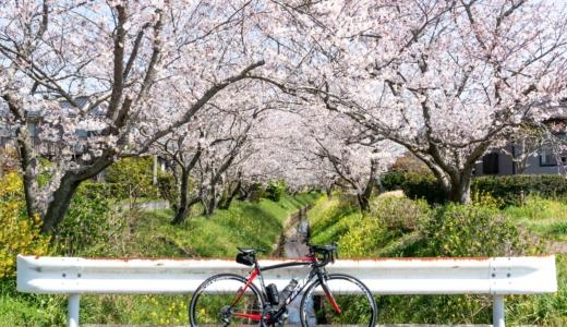 千葉・外房▶春スポット─ 春の景色・春のひととき #地元民ライド