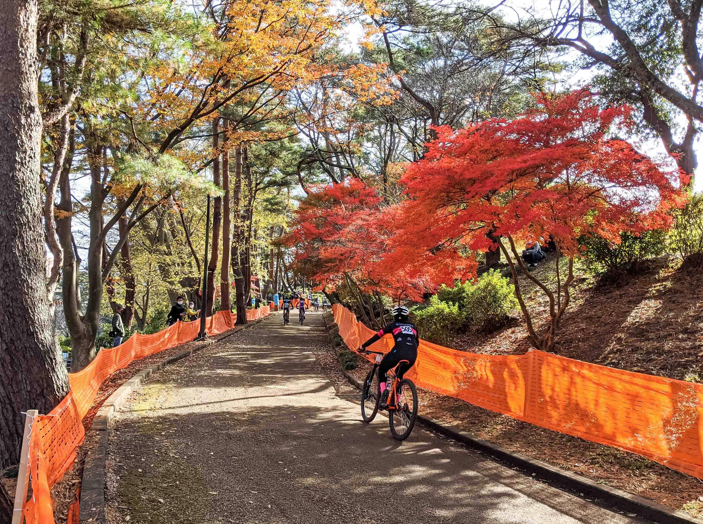 千葉公園で自転車レース もみじの紅葉